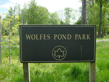 wolfspond park-large