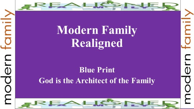 modern family realigned pt 1 ed cover