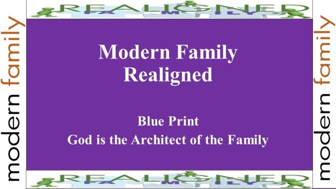 modern family realigned pt 1 ed cover
